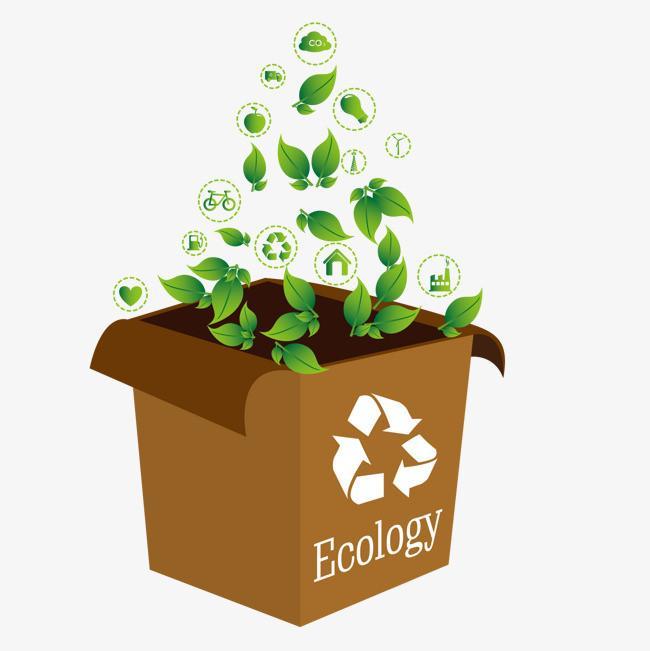 包装纸盒 环保包装
